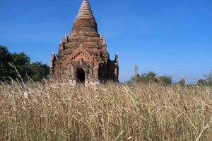Bagan-335