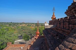 Bagan-428