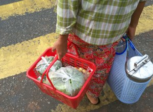 Efficient method of transporting food and shopping.