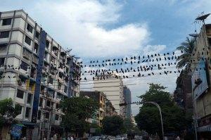 Yangon.-228