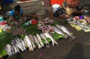 Yangon.3-11